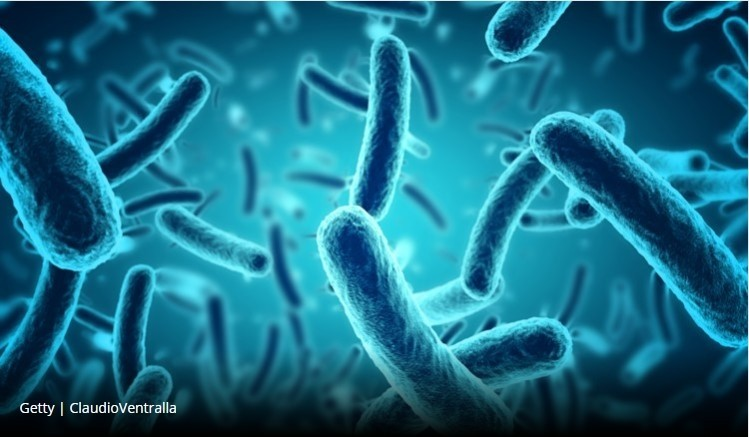 DuPont and P&G to tackle metabolic health in probiotic deal