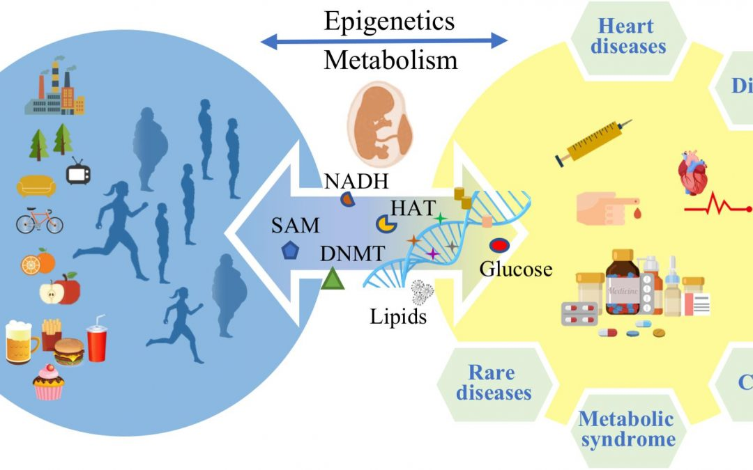 Epigenetics and Metabolism in Health and Disease
