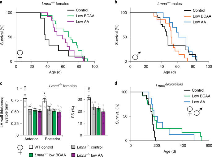 Lifelong restriction of dietary branched-chain amino acids has sex-specific benefits for frailty and life span in mice | Nature Aging